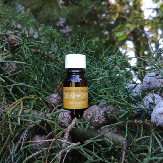 pure essential oils cedarwood 10ml