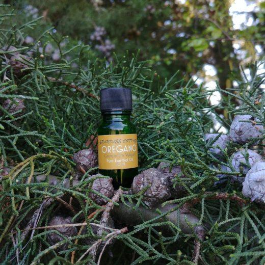 pure essential oils oregano 10ml